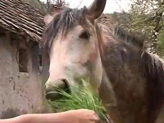 Big Bodied Farm Girl Free Amateur Porn Video E5 Xhamster